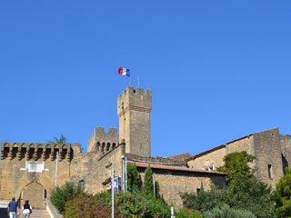 Pour vos vacances dans le sud de la France., Salon-de-Provence