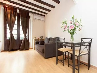 One bedroom apartment in the best area of Barcelona- El Born