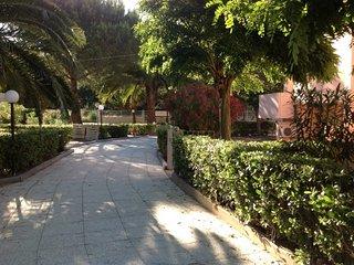 Elba Palmizi #12362.4, Gualdo a Capoliveri
