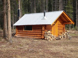 Trapper's Log Cabin, Dease Lake