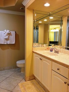 Master Bathroom large counter  shower/tub combo All linens are supplied.