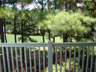 Cypress Bend #531