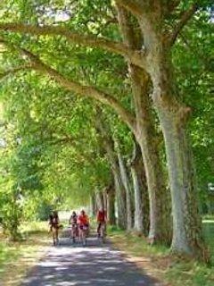 Les pistes cyclables le long du Canal du Midi