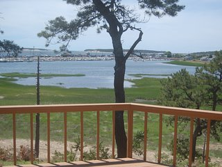 Spectacular Wellfleet Waterfront