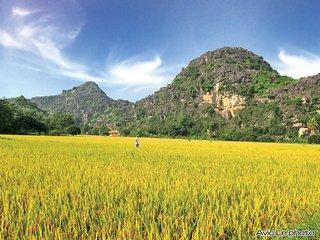 Eco-lodge Ninh Binh