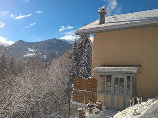 Appartement en chalet face a la chaine du Mont-Blanc, idealement situe et calme