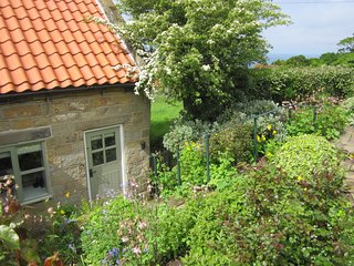 Pine Cottage - Gorgeous Cottage with Sea View, Garden, Parking and Logburner