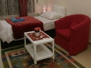 new & lovely cozy 1 room