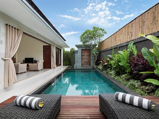Brand New 2 Bedrooms Villa (FREE airport transfers), Seminyak