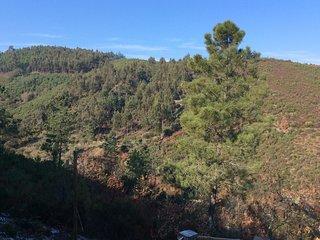 The Quinta Castanha Baralha Dreia Arganil