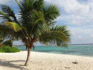 Grand Cayman: large 2 bedrooms & 2 bathrooms apartment with seaview terrace, A/C, Bodden Town