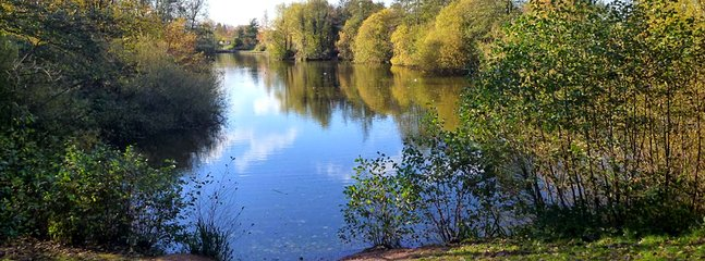 The beautiful Ryton Pools Country Park is just a mile from Broomhill Farm