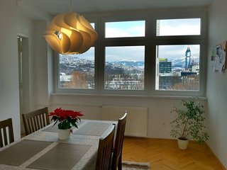 Spacious and sunny apartment with a view; free parking and WiFi