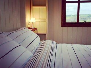The Shepherd's Hut, West Park inc wood fired hot tub, heating & family sleeping