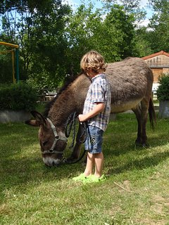 Ballade dans le camping de nos 2 ânes, Monty et Bourriquet