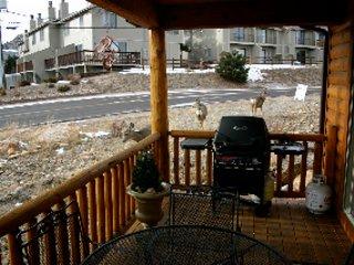 The deck gets visitors
