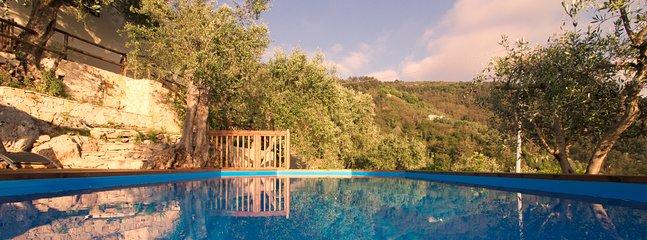 Enjoy an early morning swim in the wonderful salt water pool