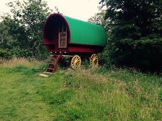 Wanderlusts Gypsy Caravan in Situ (Zingaro), Hawkshead
