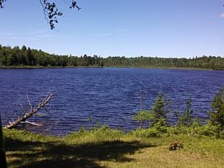 Family Lakeside Cabin Private Lake and Acerage Fishing Hiking Hunting and Nature, Crystal Falls