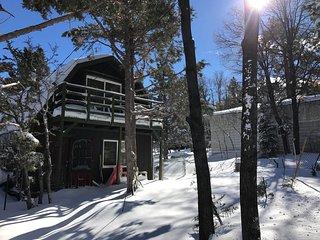 Remodeled Rustic Big Bear Cabin w/ Chef's Kitchen, Big Bear Lake