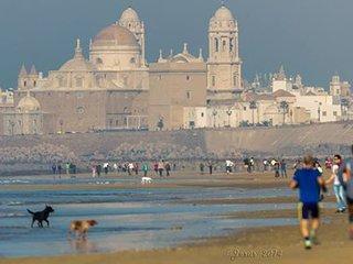 Oferta piso verano en Cádiz. Junto a playas.