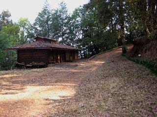 Cabana en el bosque 'Erendira'