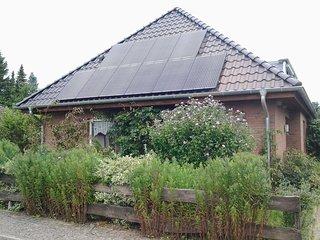 Ferienwohnung an der Elbe - Entspannung an der Niedersächsischen Elbtalaue