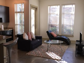 Luxury, Modern New Loft in Buckhead/Midtown!, Atlanta