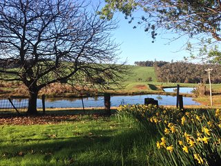 Chestnut Brae Farm Stay, Nannup