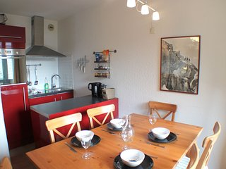 Balme 3B - Modern 2 bedroom apartment in Chamonix Sud
