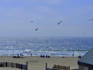 Surf & Sand! Gorgeous Luxury Condo steps from the water in the Heart of Pismo!