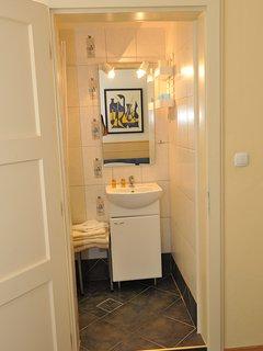 En-suite bathroom with shower, basin, mirror