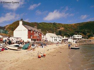 Gadlas: Large 5* Cottage - Llyn Peninsula - 51945