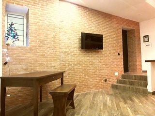 Brand new studio apt city center