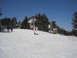 Cozy Ski In, Ski Out Apartment- Heart of Snowshoe Mountain