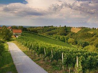 Turisticna kmetija Dervaric- vinefarm