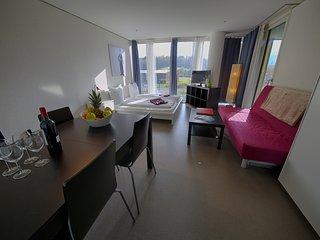 LU Gletschergarten III - Allmend HITrental Apartment Lucerne