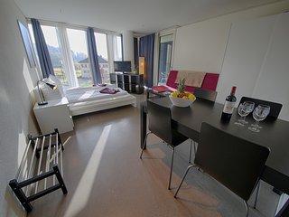 LU Nadelwehr II - Allmend HITrental Apartment Lucerne