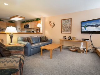 Liftside Condominiums 20 - Spacious ground floor property with ski area views, walk to slopes!, Keystone
