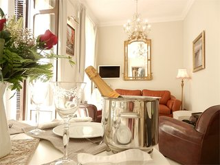 Beautiful luxury apartment in the historic center