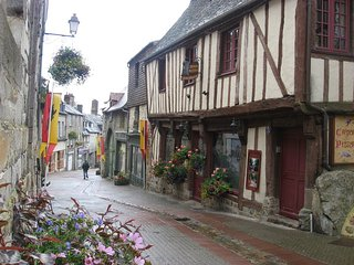 Cute typical French 3 bedrooms 2 bathrooms home in countryside village