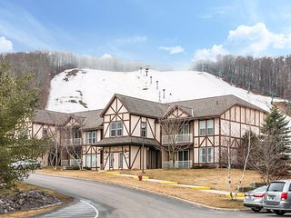 Michigan skiing - two rooms available - due to warmth going cheap.($50/nite), Boyne Falls