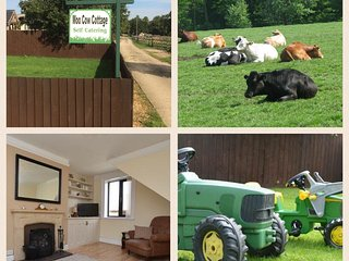 Moo Cow Cottage- self catering, Stretton