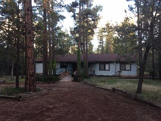Spacious Cabin in the Trees