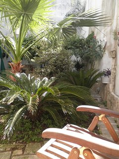 il nostro rigoglioso giardino