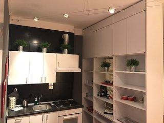 Splendido appartamento moderno e confortevole, Bologna