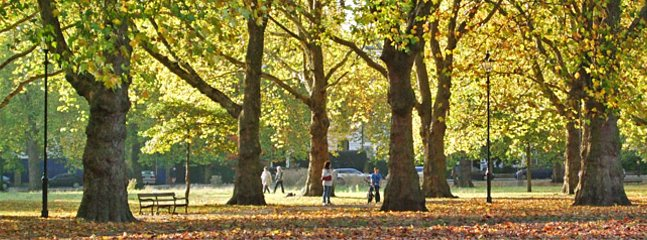 Highbury fields is a large local park, a 5 minute walk away.