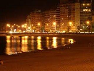 Rambla de Pocitos night view
