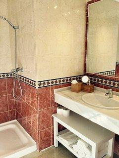 Master bathroom 1 with shower, bash basin, toilet and bidet