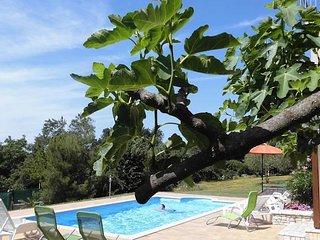 Villa Verde, Nova Vas